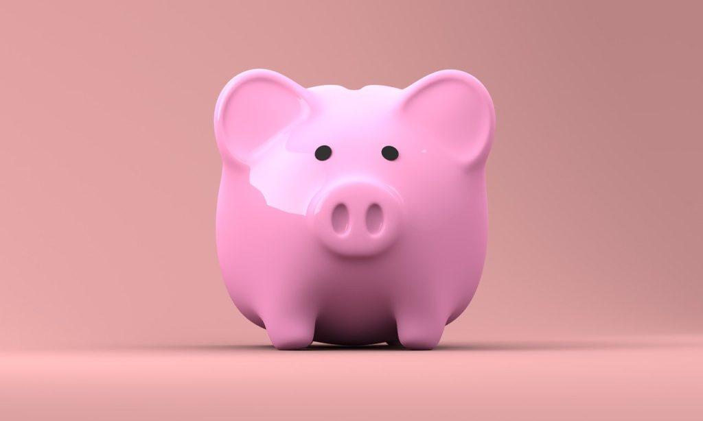 cerdo Erasmus